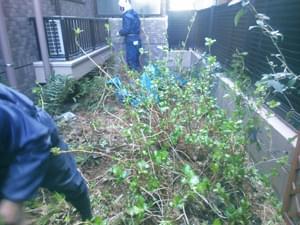 既存の草木を伐採処分