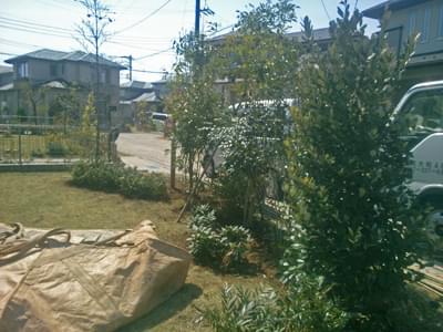 植栽の整ったお庭