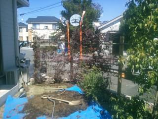 生垣の植木を植栽