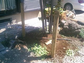 設置された垣根の柱