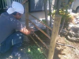 竹を磨きます
