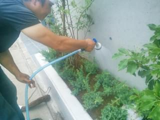 散水をして植栽が完了となります