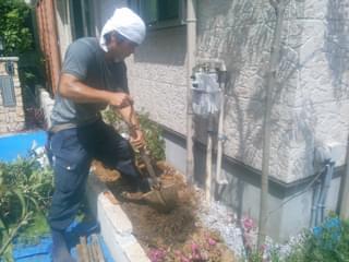 既存植栽を根ごと撤去