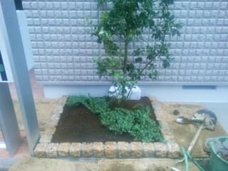 低木(グランドカバ)ーの植栽