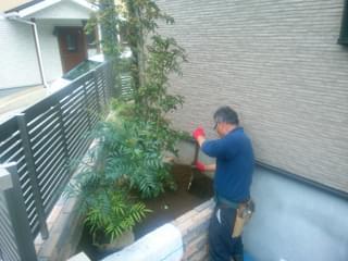 主木に添える低木を植栽