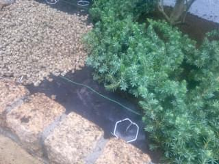 防草シートと錆砂利