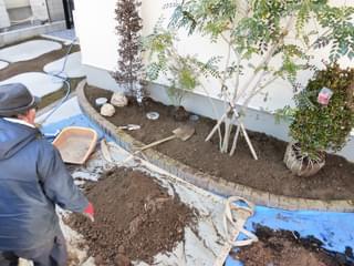 立ち木植栽配置の確認