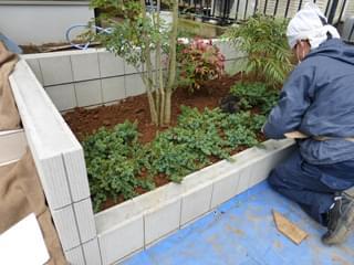 シンボルツリーの足元はブルーパシフィックを植栽