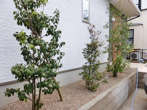 お住まい外壁前に植えられた植栽群