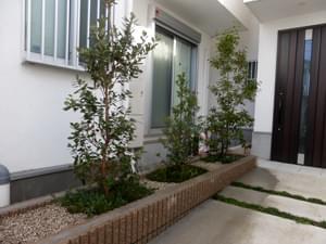 植栽と雑草対策の施工を終えた花壇の様子