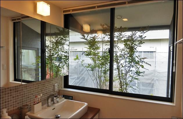 室内から感じるプランター植栽の緑