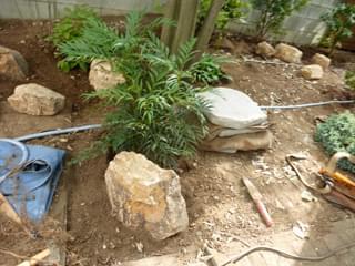 コンフューサに寄り添う庭石
