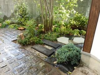 雑草対策の整ったお庭