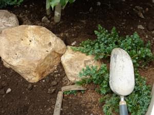 みかも石と植栽の色彩