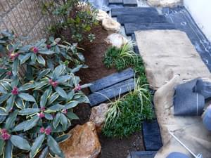 花壇を形付ける下草類