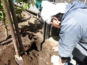 ウッドフェンスの柱を埋め込む穴を掘ります