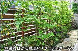 頭上の緑が心地良さを感じさせるナチュラルガーデン-板橋区N様邸