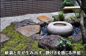 苔が静けさを感じさせる、蹲を設えた坪庭-台東区お寺様中庭