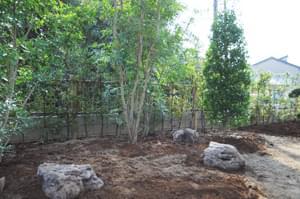 最終デザインを意識した庭石配置