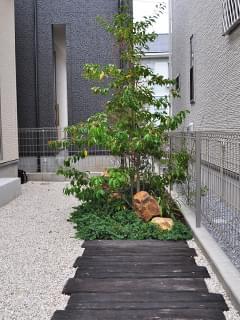 駐輪スペース越しに見るお庭
