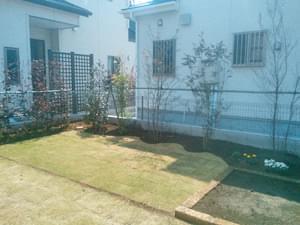 植栽終えたお庭の様子