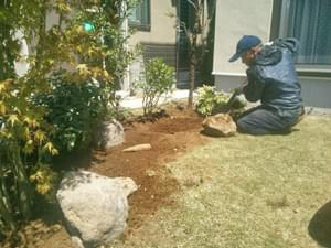 自然味ある庭石の据え付け