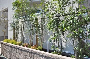 低木植栽を加えて鮮やかになった花壇