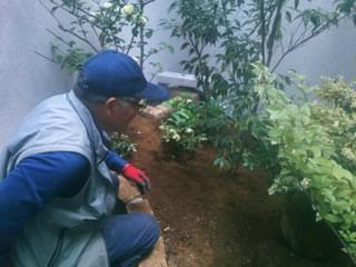 下草類の植栽