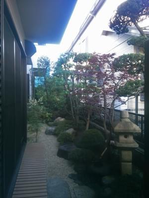 剪定作業を終えたお庭の全景