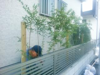 玄関よりにはブルーベリーを植栽