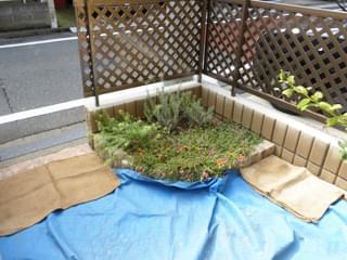 施工前の花壇の様子