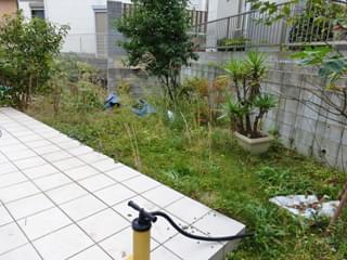 雑草に悩まれるお庭