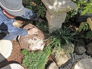 下草類を植栽