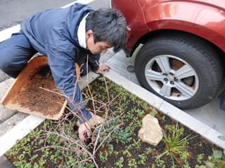 培養土の透き込み