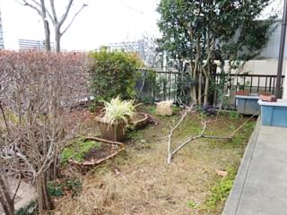 リフォーム前のお庭