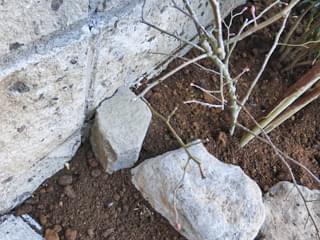 六方石で土留め