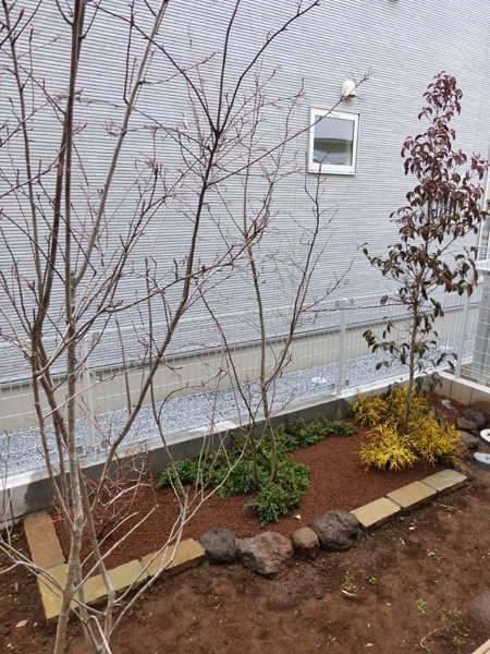 ウッドデッキから眺める花壇と植栽