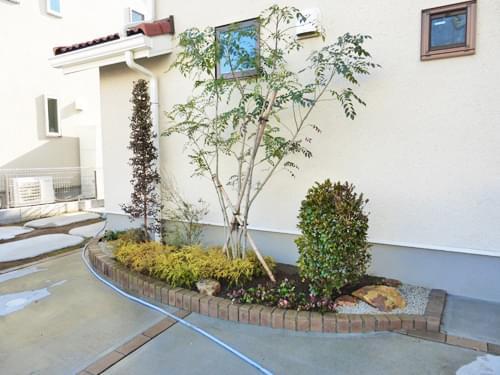 植栽を終えた花壇の全景