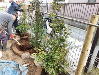 植栽を終え、土を混ぜ合わせて完成です