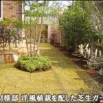 様々な洋風の植木をレイアウトした芝生ガーデン-杉並区M様邸