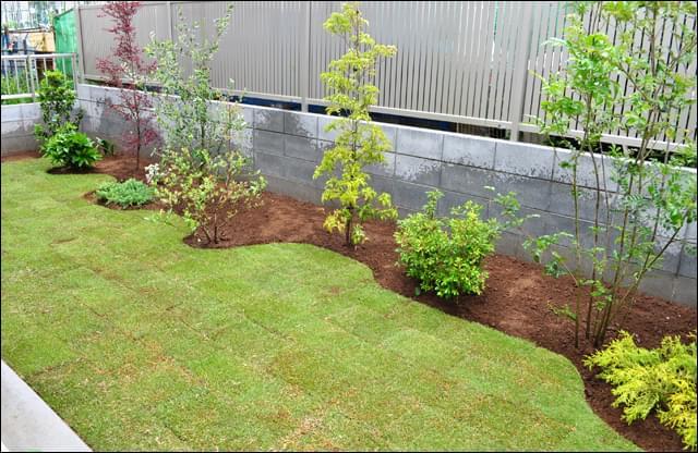 空間を機能的に空けた植栽レイアウト