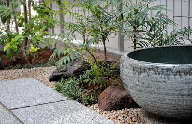 睡蓮鉢と低木、下草の調和