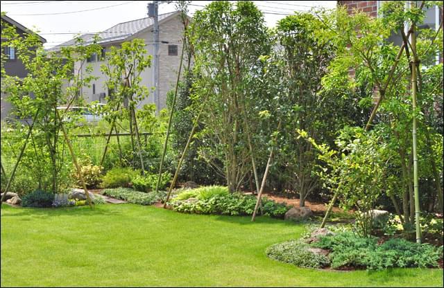 背景に生垣を持つ芝生のナチュラルガーデン