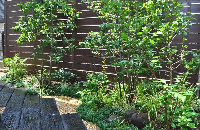 目隠し樹脂フェンスが背景のナチュラルガーデン