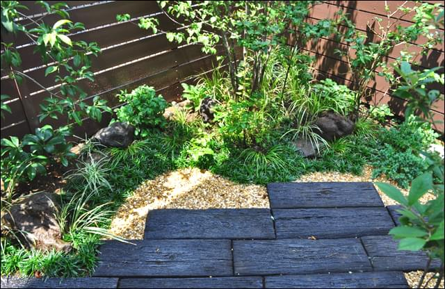 森の様な印象を待ちながらも空間を確保した庭