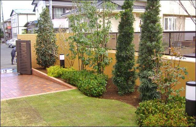 目隠し効果を持つ常緑樹の植栽エリア