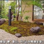 蹲、築山、刈り込み模様を凝らした和風の庭-葛飾区O様邸