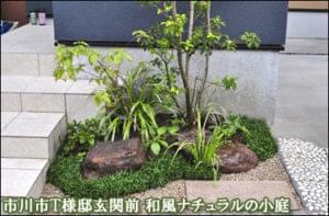 玄関前にシンボルツリーと下草類を合わせ、坪庭風のデザインに-市川市T様邸