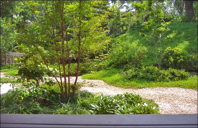 ウッドデッキから眺める庭は遠近法により奥深い景色に