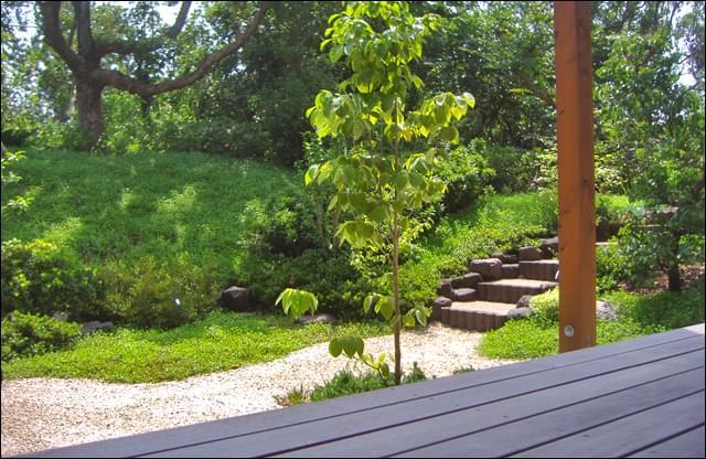 実用・景観を兼ね備えた階段が庭風景のアクセントに